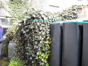 Castle-Garden-and-Property-Maintenance-Vincent-0862133704