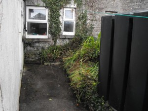 Castle-Garden-and-Property-Maintenance-Vincent0862133704