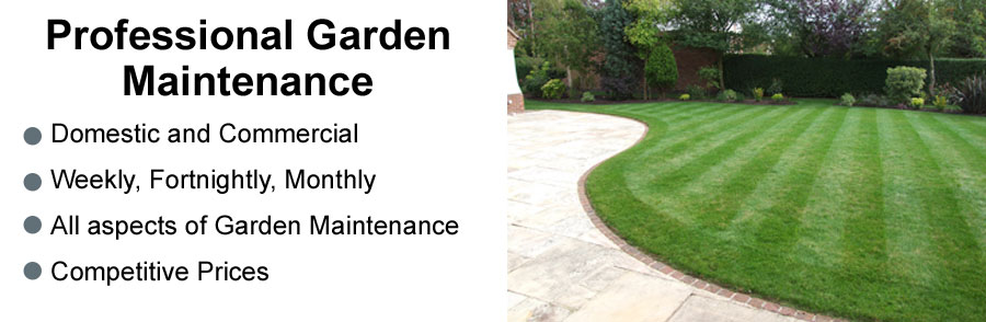 castle garden and property maintenance - Garden Mainenance